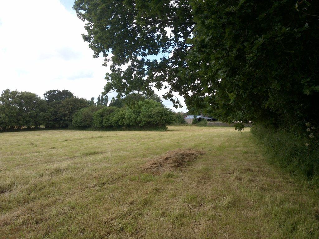 Field where I Coy became isolated 8/9 July 1944.